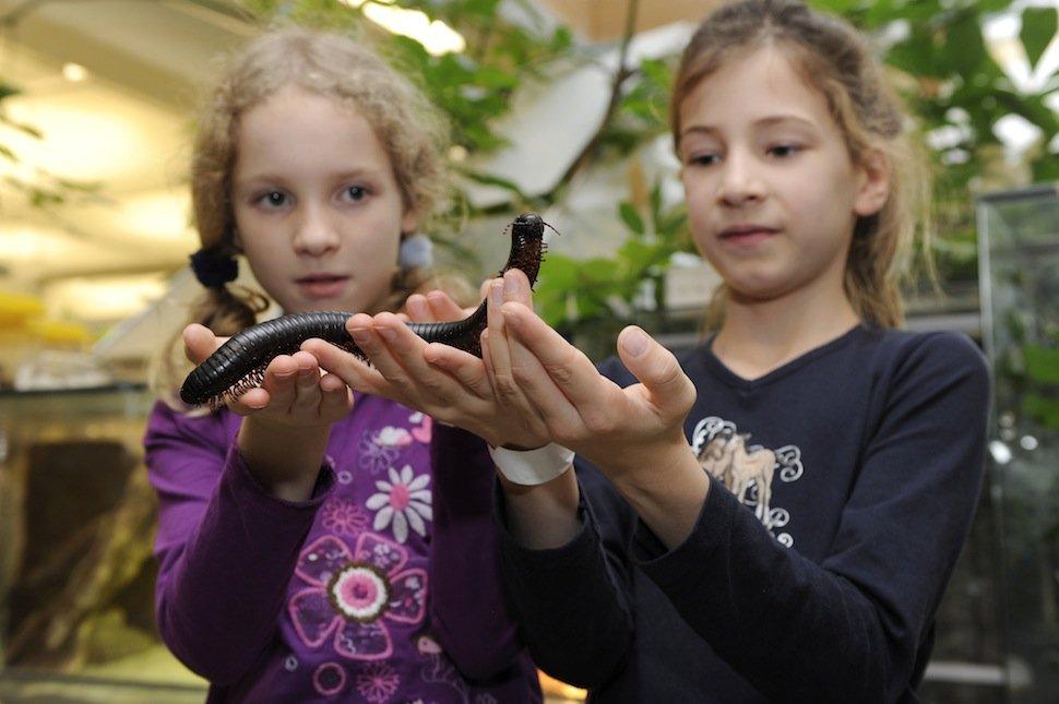 """Emanuel Wöhrl Stiftung unterstützt Ausstellung """"Schatzkammer Erde"""" im Kinder- und Jugendmuseum"""