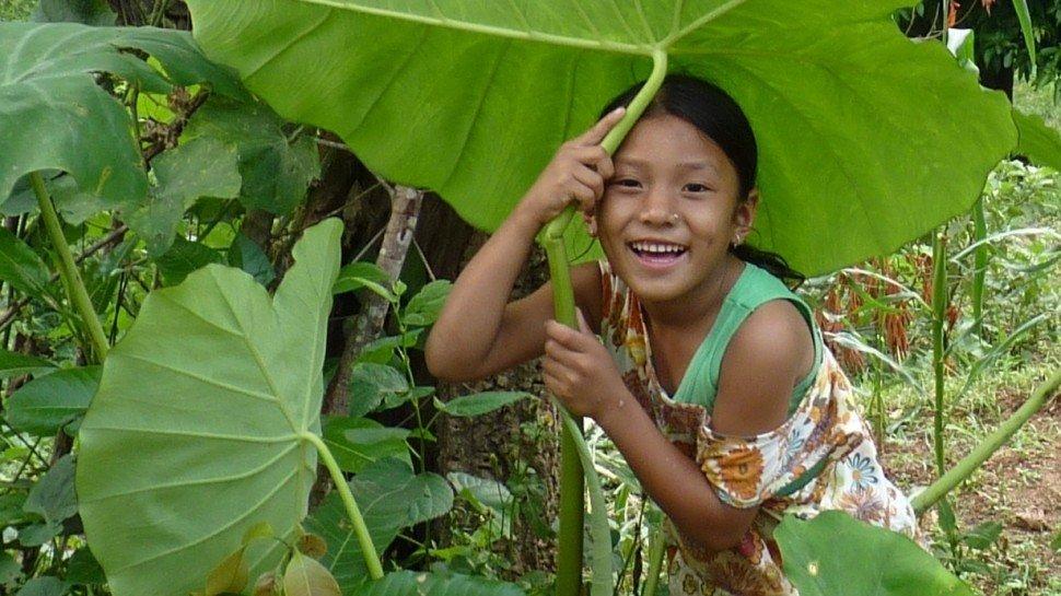 Die Emanuel Wöhrl Stiftung unterstützt das CFO Kinderdorf in Nepal. Hier gibt es ein Update direkt aus dem Monsun, denn der Sommerregen bestimmt derzeit das Leben in Nepal, lässt die Natur und sogar die Hauptstadt Kathmandu in prächtigen, frischen Farben erstrahlen.